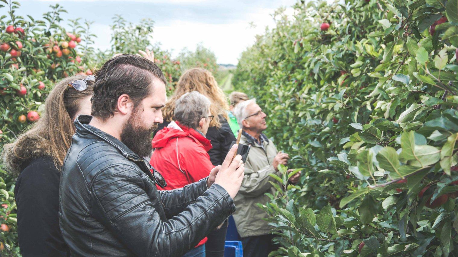 The Greenery nodigt bloggers uit in boomgaard van Van Wijk Fruit