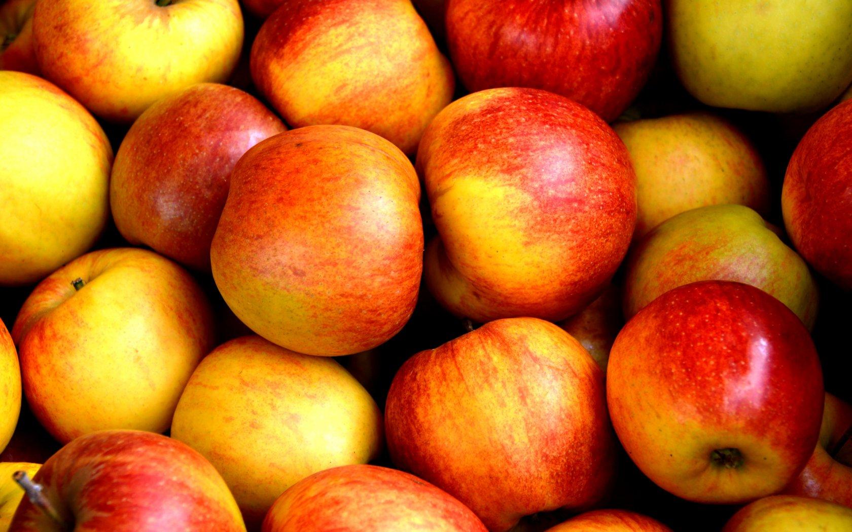 Greenery-teler Van Wijk Fruit genomineerd voor ondernemersprijs