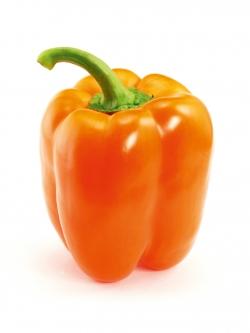 Poivron traditionnel orange