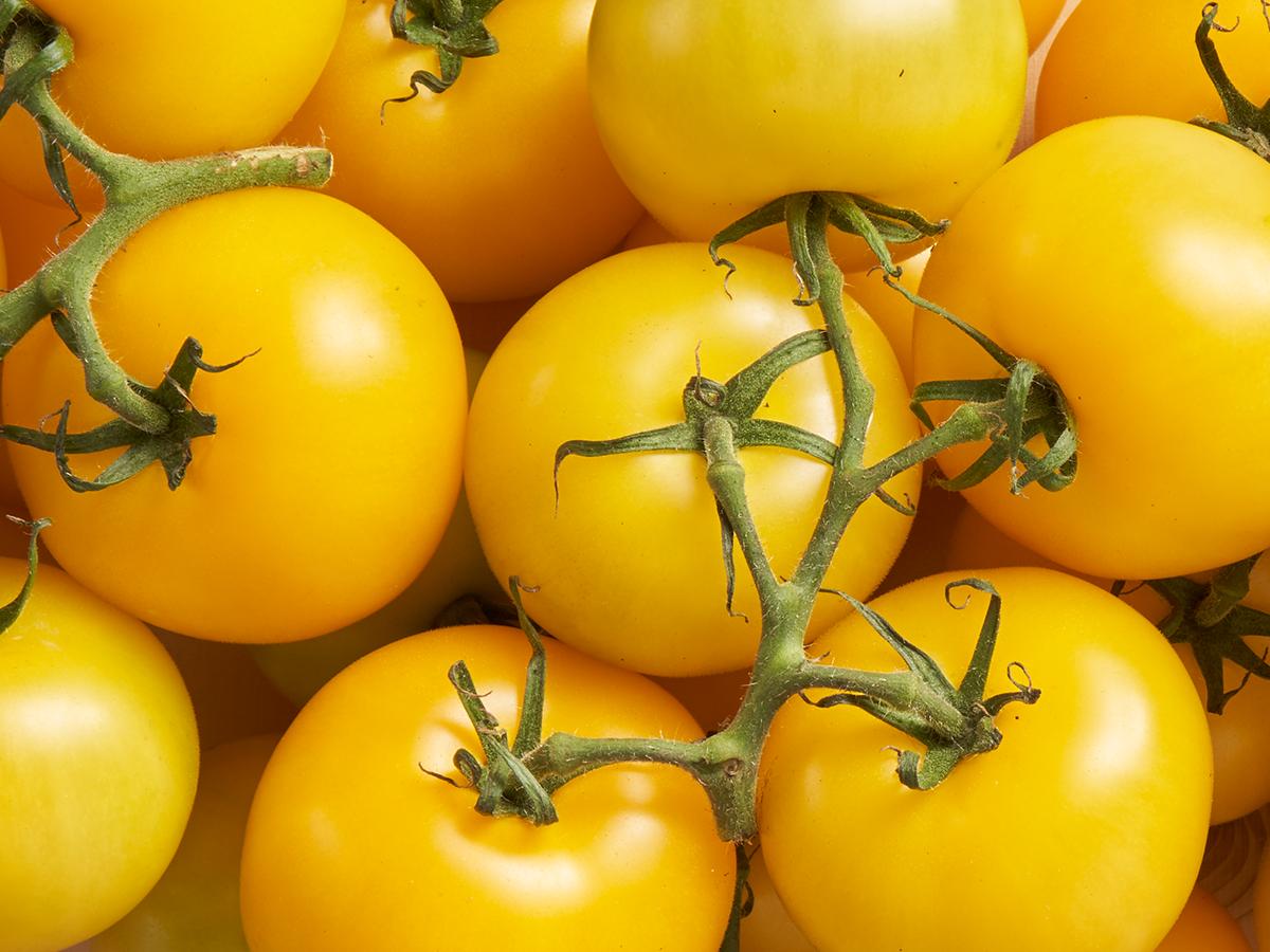 Les tomates grappes jaunes