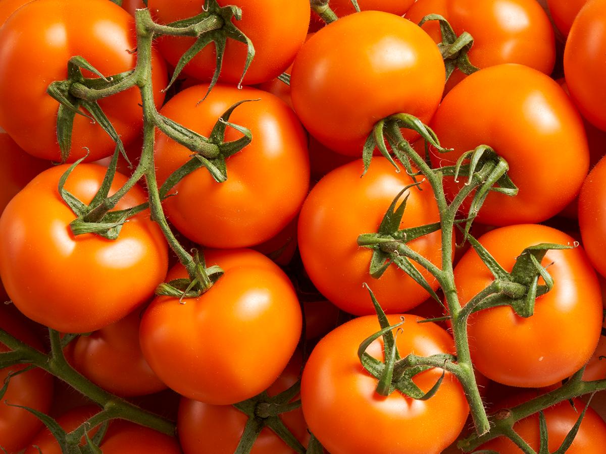Les tomates grappes oranges