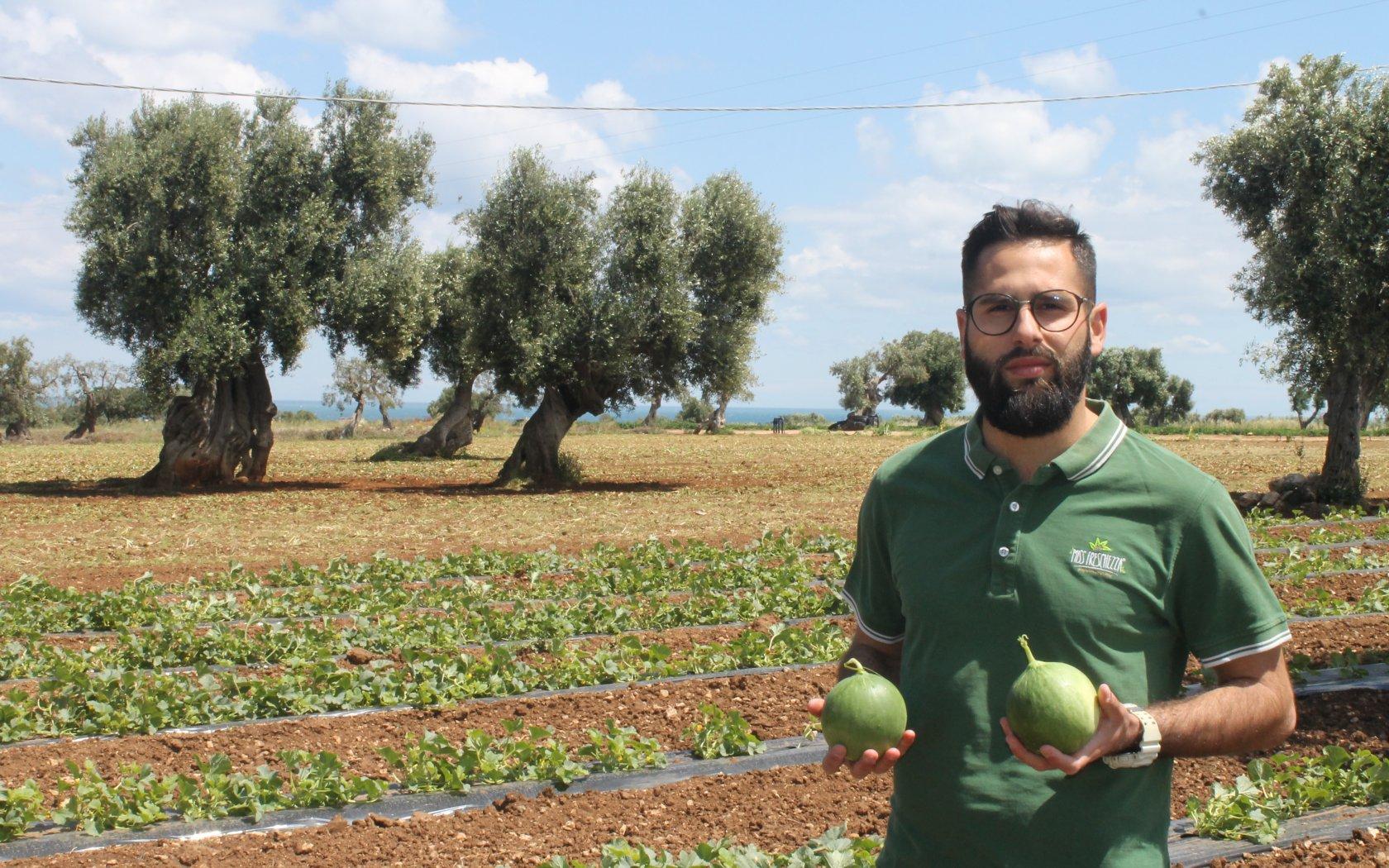 De Cumelo, een meloen of toch niet?