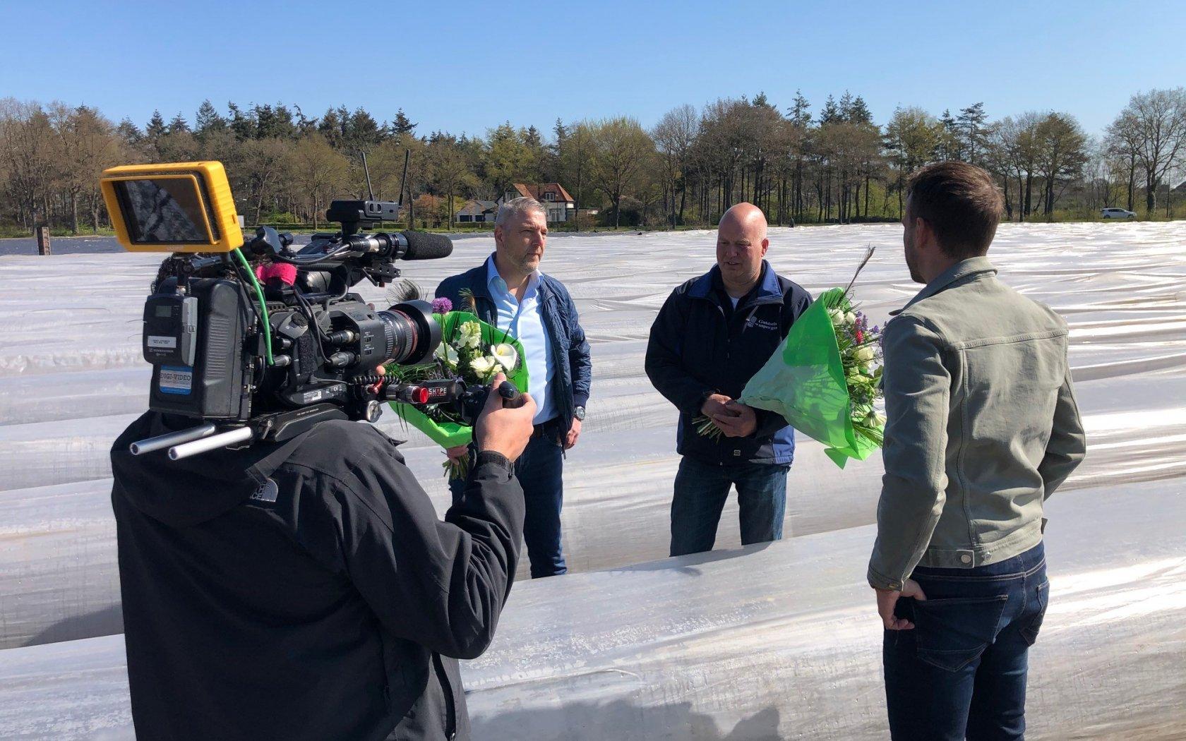 Hollandse asperge: van vollegrond tot supermarkt
