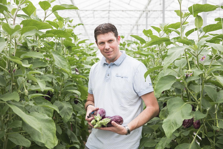Dennis van Luijk: dé teler voor specialty aubergines