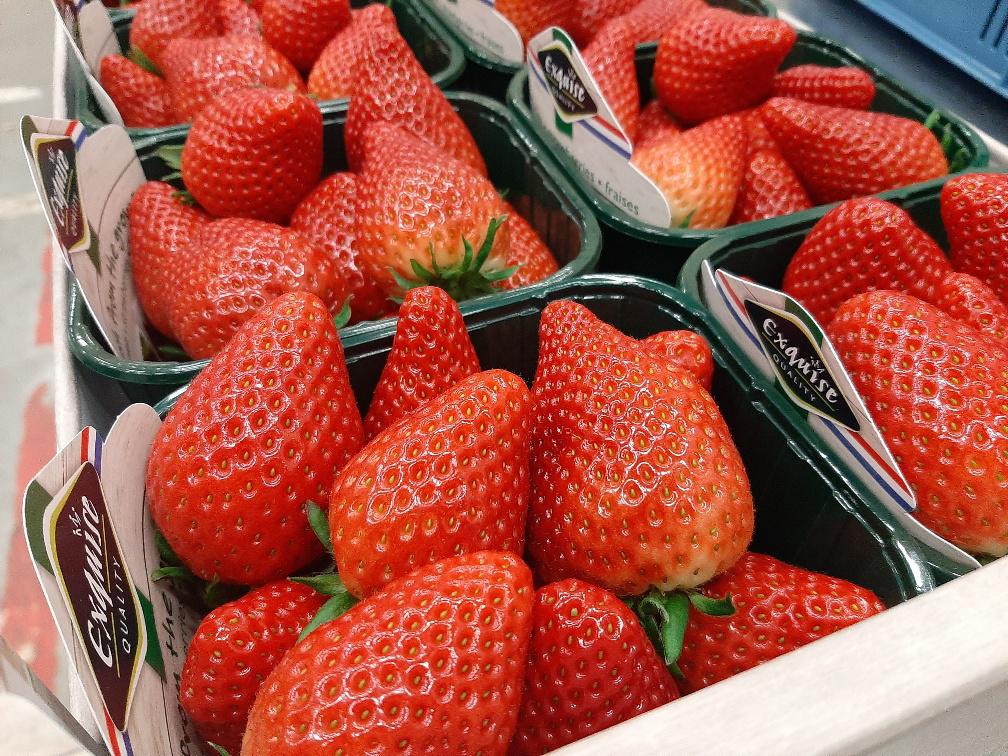 Eerste Inspire aardbeien deze week beschikbaar bij The Greenery