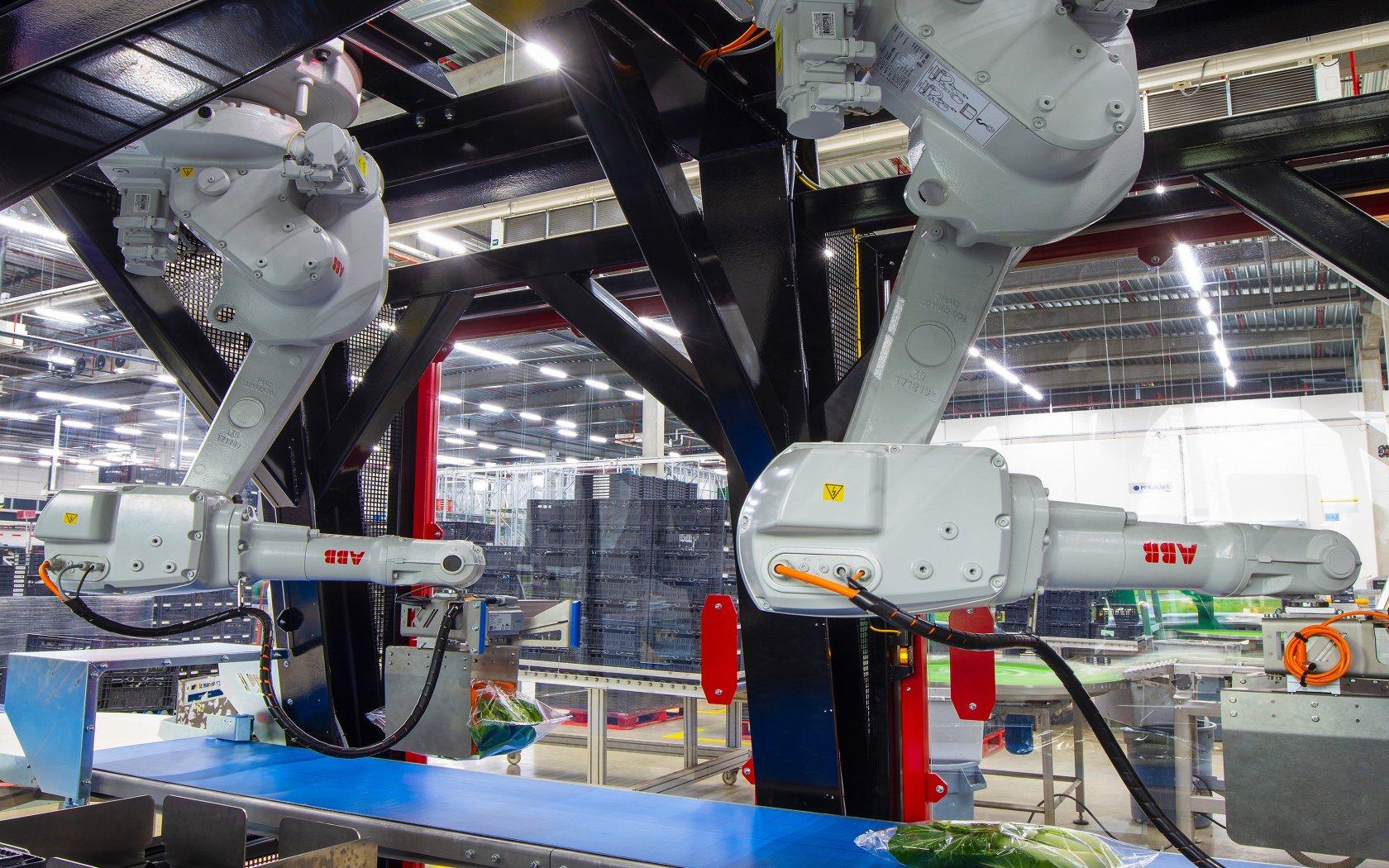 The Greenery robotiseert inpakproces in dc Barendrecht