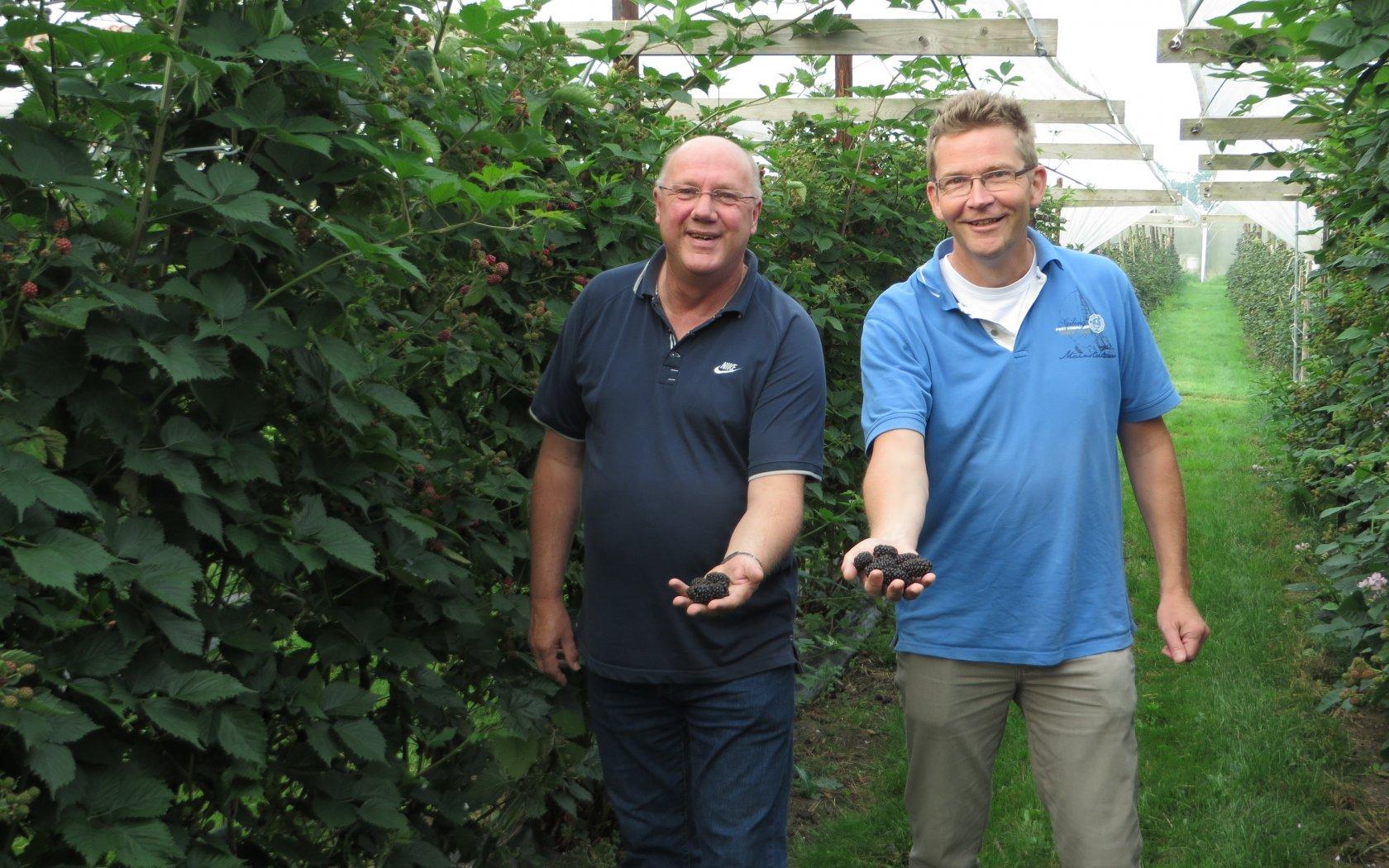 Start Nederlands zachtfruitseizoen