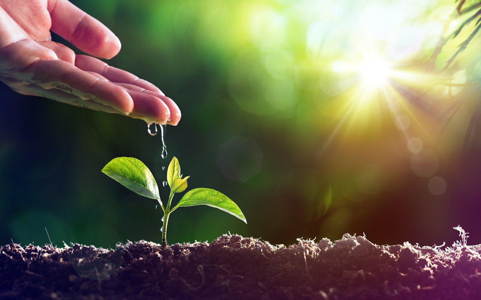 Sociale duurzaamheid, milieu en due diligence: The Greenery ondertekent opnieuw overeenkomst met IDH